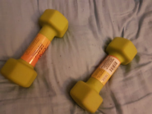 Two Five Pound Weights