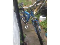 Apollo 21 gear men's mountain bike used