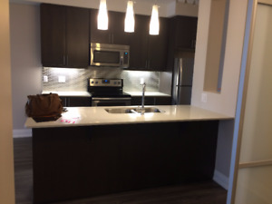 brand new never lived-in beautiful condo for rent