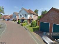 1 bedroom flat in Windmill Court, Colchester, CO4 (1 bed)