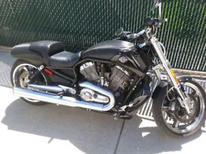 2009 Harley Davidson Vrod muscle Vrscf