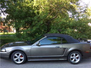2001 Ford Mustang Cabriolet