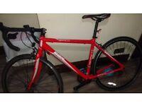 Dbr Sprint bike