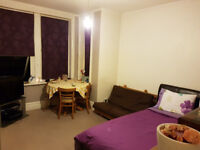 Private Landlord***NO FEES**A luxurious very spacious fully furnished studio flat in town centre