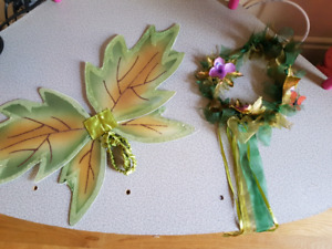3 peice Woodland fairy Halloween costume