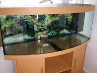 5 FT JEWEL VISION BOWFRONT FISHTANK IN BEECHWOOD WITH MATCHING IN GOOD CONDITION