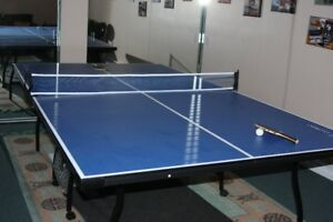 PROFESSIONAL PING PONG TABLE EASTPOINT