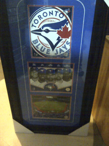 toronto Blue jay package