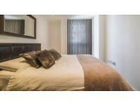 Double room in 2 bedroom garden flat £680 all inc