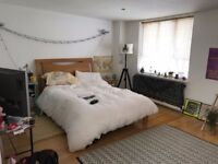 HOUSE SHARE LARGE DOUBLE ROOM WITH PRIVATE EN-SUITE, BROCKLEY, SE4