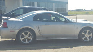 2004 Ford Mustang 5.L Coupe (2 door)