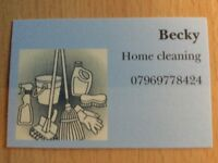 Home Cleaner Southsea area £12ph