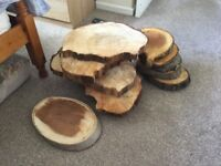 Wooden logs 12 in total plus large amount of small logs