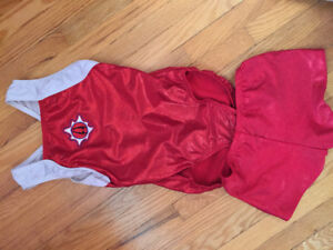 Nepean Corona gymnastics leotard and shorts