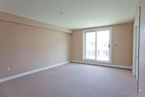 Lovely bachelor apartment with amenities - perfect for student