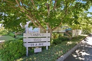 Absolutely Stunning Updated Open Concept!
