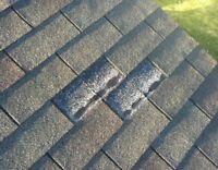Fix that Leaky Roof or Install a New One! Professional Roofing!