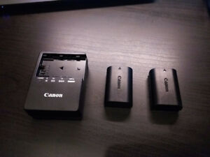 Canon LP-E6 batteries and LC-E6 charger