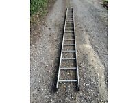 Twenty foot long single ladder