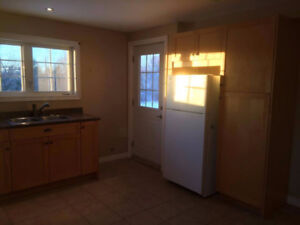 Available Sept 15th, 1 Bedroom Basement walkout Apt for Rent