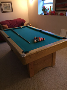 Pool Table/Table Tennis Surface