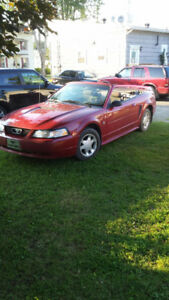 2000 Ford Mustang Decapotable Cabriolet