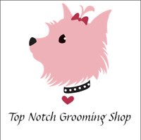 Dog Grooming in comfortable home environment