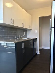 Spacious Modern Newly Renovated 2 bed apt