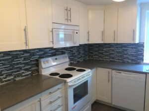 Large, Modern, Downtown 1 Bedroom Apartment -3 1/2