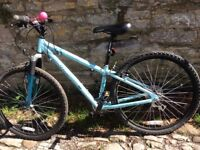 Ladies mountain bike - will throw in pink horn and lights. Hardly used therefore in good condition