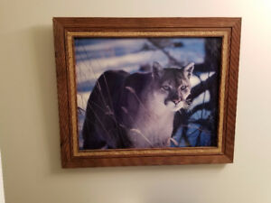 Beautiful Cougar Sketched Art In Beautiful Frame 20 x 14