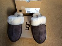 Ugg ladies slippers brand new size 6