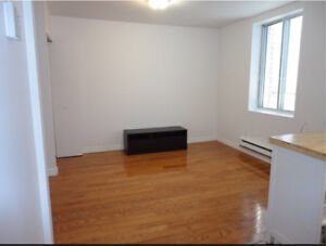 Room for rent in 3 1/2 apartment