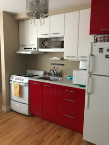 Modern 1 Bedroom on Wellington Street- Utilities included