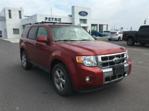 2012 Ford Escape Limited - HEATED LEATHER, MOONROOF