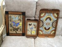 Butterfly trays and picture.