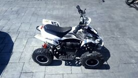 Childs electric quad bike 800w