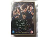 Fantastic Beasts DVD - Brand New still in Cellofane