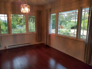 Main floor 3 bedroom (with gorgeous fenced yard) in Oak Bay
