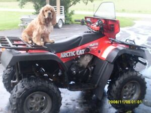 Artic Cat 500 ATV