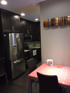Fully furnished Apartment for rent South Edmonton