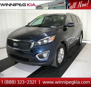 2017 Kia Sorento LX *No Accidents!*