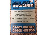 lovely jubbly window and gutter cleaning services