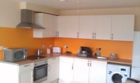 Nice 2 bed flat in Chelston, near schools, parks amenities.