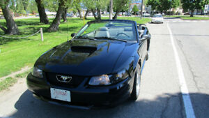 2002 Ford Mustang GT Coupe Convertible