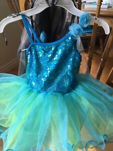 Costume/Dance dress