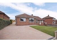 2 Bed newly refurbished bungalow to let