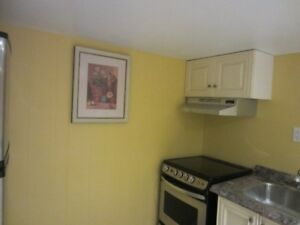 COZY 1 BEDROOM WITH NICE BATHROOM AND KITCHEN-NEWLY RENOVATED