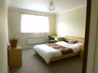 A Large, Bright, Ensuite Double room to rent