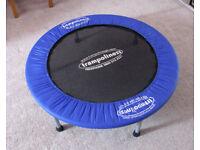 Trampoline 38 inch diameter.